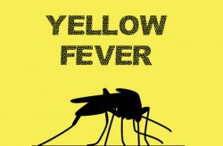 yellow_fever
